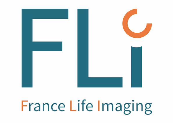 logotype_fli_coul_72dpi_crop.jpg